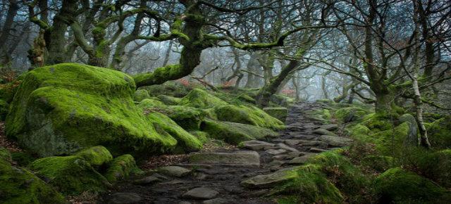 Padley Gorge, Regno Unito