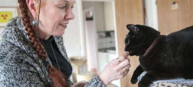 Anche i gatti miagolano con un accento?