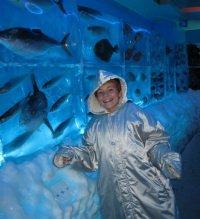 Il primo acquario congelato