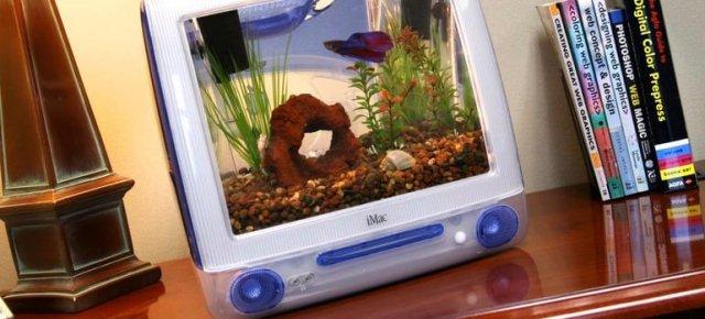 Trasforma vecchi iMac in acquari unici