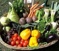 Forte fobia per le verdure