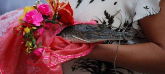 Sindaco messicano sposa un coccodrillo