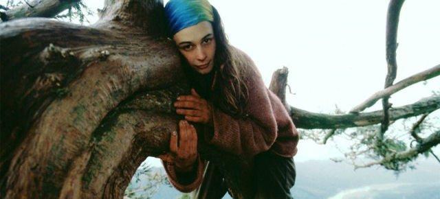 Julia ha vissuto due anni su un albero