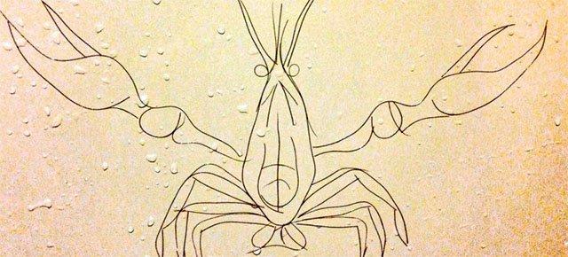 Opere d'arte con i capelli persi nella doccia