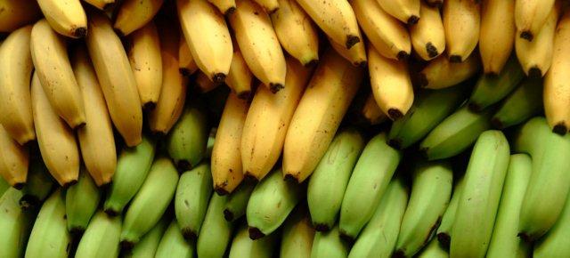 Le banane sono a rischio estinzione