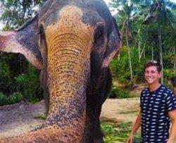 Elefante ruba fotocamera e scatta un selfie
