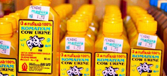 Cosmetici a base di pipì di mucca