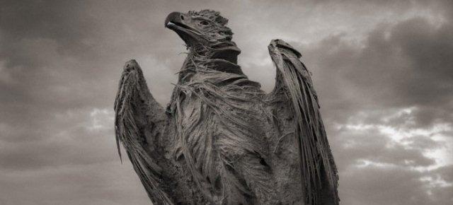 Il lago che trasforma gli animali in statue