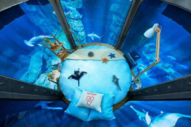 Dormire tra gli squali dell'acquario di Parigi 3