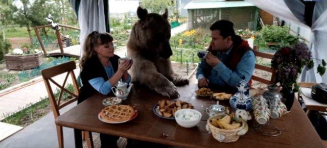 Famiglia russa vive con un orso in casa