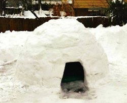 Costruisce un igloo in giardino e lo affitta