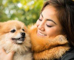 Pellicce etiche, fatte con animali investiti