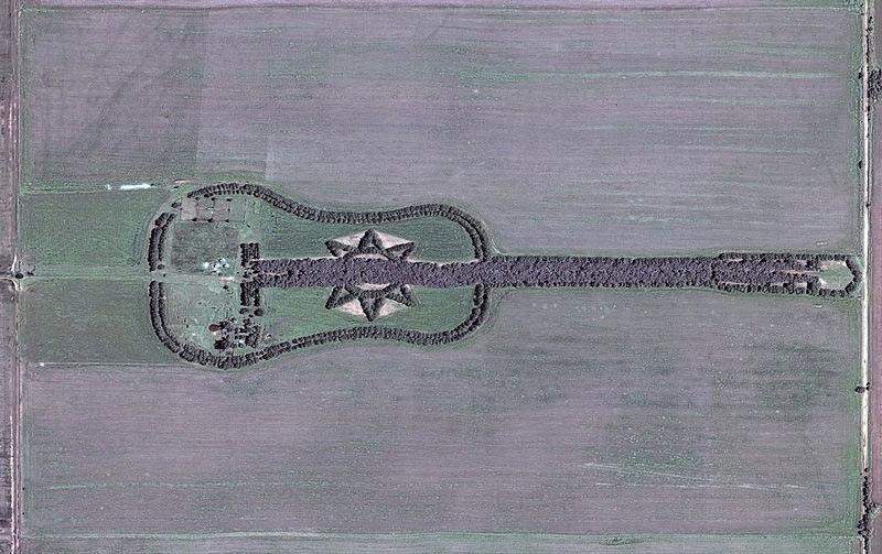 Pianta una foresta a forma di chitarra 1