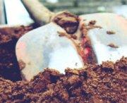 La gara di scavi per becchini