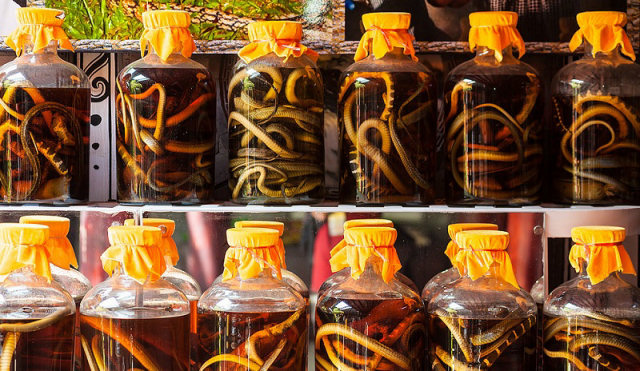 Vino con serpente - Vietnam