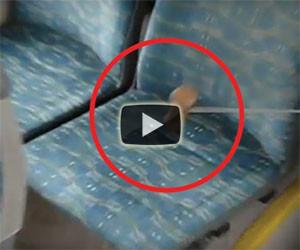 Batte con un martello il sedile del bus, ecco quello che viene fuori