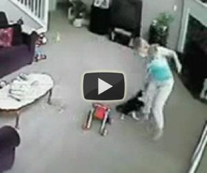 Il gatto aggredisce la babysitter, il motivo è davvero incredibile