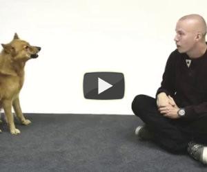 L'uomo che conversa con i cani