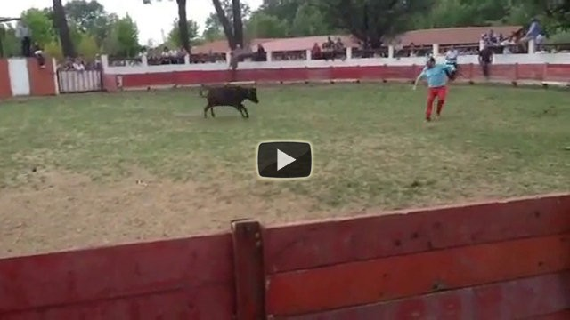 La vendetta del toro