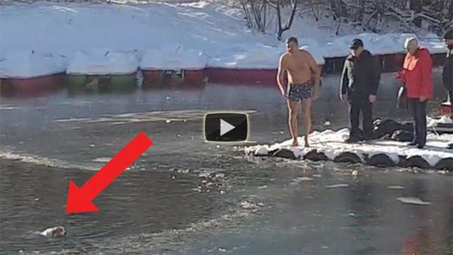 Si tuffa nel lago ghiacciato e salva un cane che sta per annegare