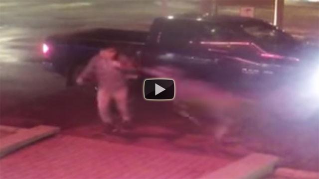 Cervo travolge un ragazzo a piedi, ecco il video incredibile