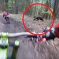 Due ciclisti si avventurano nel bosco e fanno un incontro inquietante
