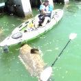 Pesca un pesce enorme su un kayak, lui però si difende così...
