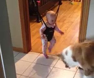 Cane insegna alla bimba a saltare