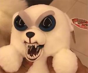 Carino o terrificante? Guardate il video e giudicate