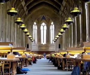 Un ragazzo fa esplodere un bicchiere di petardi in una biblioteca