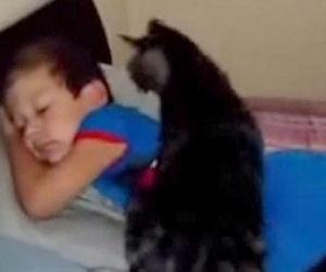 Torna dal campo estivo, ecco come lo accoglie il suo amico gatto