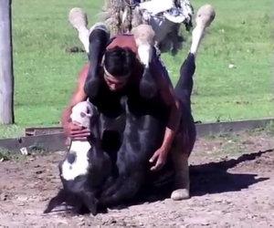 Molto più che un semplice addestratore di cavalli (autodidatta)