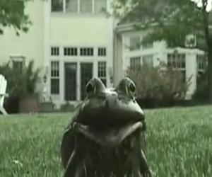 La rana incazzata