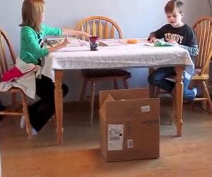 Il papà mette una scatola vicino al tavolo, la sorpresa è fantastica