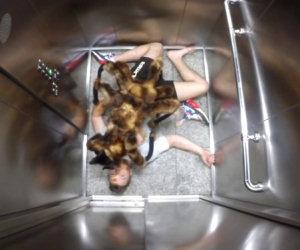 Lo scherzo dell'enorme ragno mutante