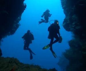 Vanno in vacanza alle Fiji, ecco cosa riprendono sotto il pelo dell'acqua