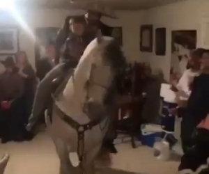 Party in casa con un cavallo