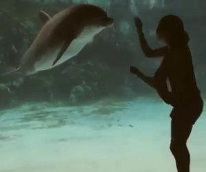 Ragazza fa ridere un delfino