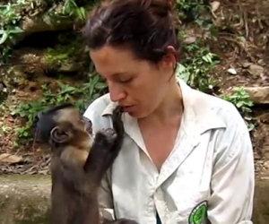 Scimmia condivide cibo con una donna