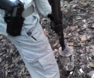Tagliare la legna con un fucile