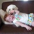 Il cane coccola questa bambina come se fosse la sua cucciola