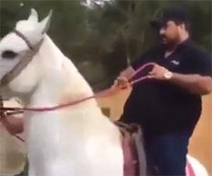 Troppo pesante per andare a cavallo, ecco cosa succede...