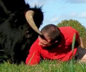Un ex toro da corrida diventa il suo migliore amico