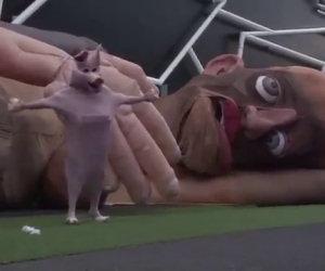 Ecco in scena uno show di pupazzi che traumatizzerà tutti i bambini