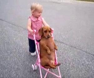 La bimba spinge il passeggino e lui sembra rilassarsi non poco