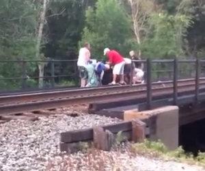 Salvano la vita ad un cavallo incastrato nelle rotaie di un treno