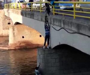 Degli angeli salvano un cucciolo intrappolato nel fiume