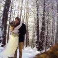 Due sposi fanno girare il video del loro matrimonio al proprio cane