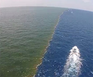 Il fiume ed il mare si incontrano, lo spettacolo è incredibile