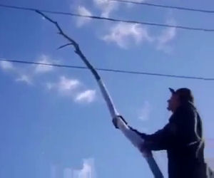 Idiota gioca con i cavi elettrici